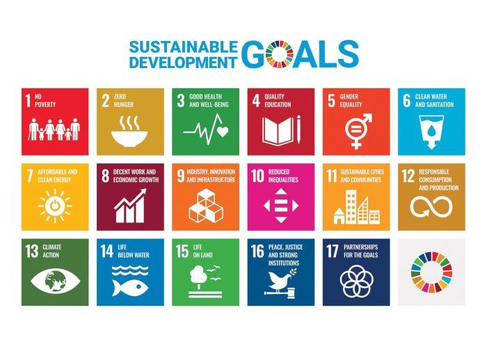 ICM's work in SDG 1